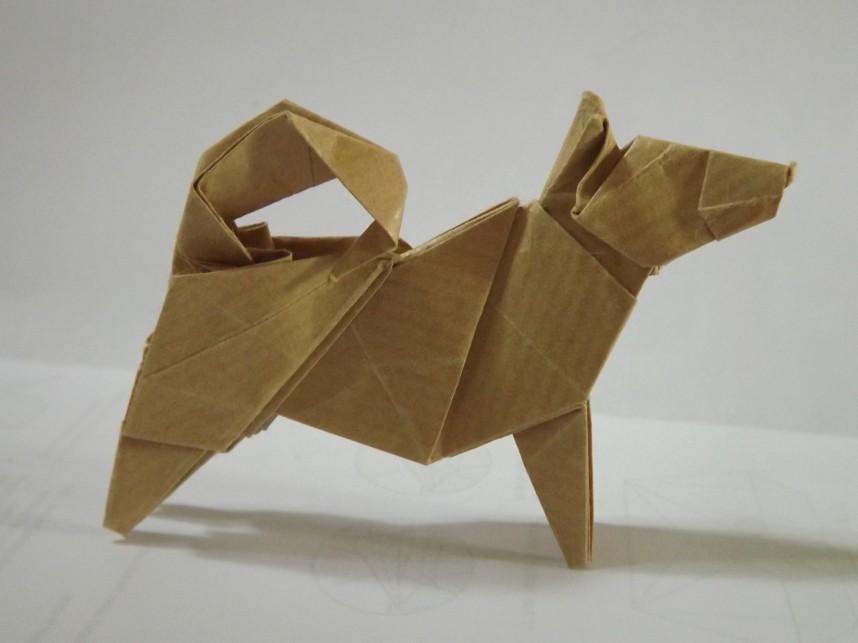 Inu Retsnimel Tags Dog Max Paper Origami Kraft Heavyrain Hideokomatsu Finepixs4000