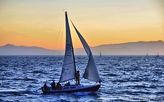 Captain on Deck (lhg_11, 2million views. Thank you!) Tags: california sailboat photography berkeley sailing sanfranciscobay sunsetcolors nikond90 lawrencegoldman lhg11