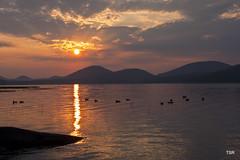 Sunrise at the Lake (doveoggi) Tags: lake sunrise adirondacks upstateny newyorkstate piseco 8442