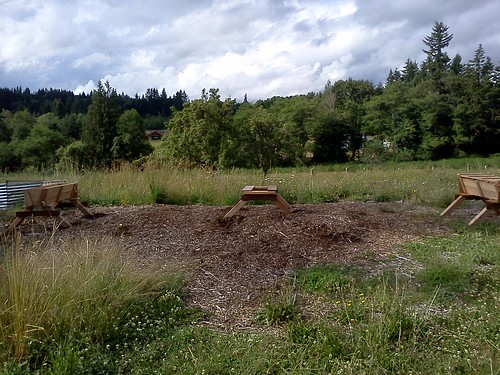 new apiary hives and stand