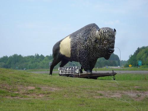 Buffalo House
