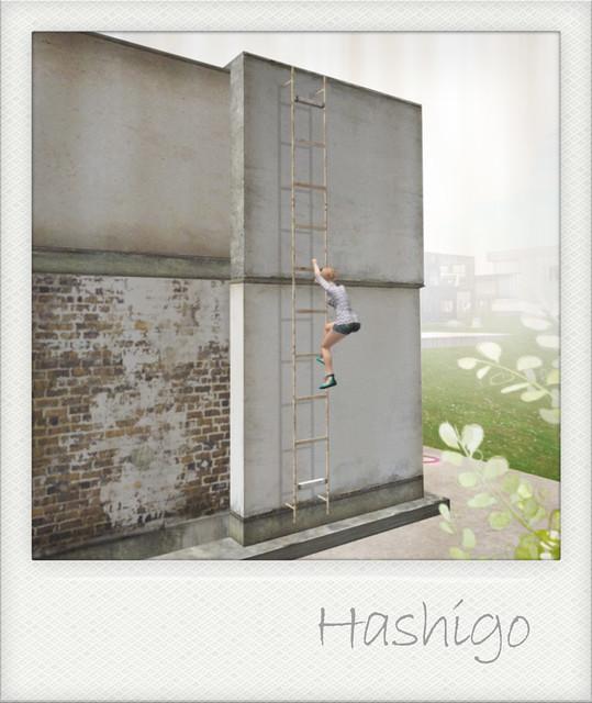 *Y's HOUSE* HUNT 2011_Prizes_OMISE002[1/4]_Hashigo