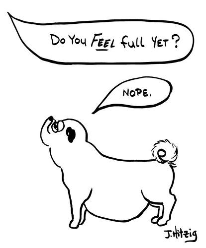 pugFull-c