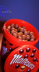 Maltesers (Bshayer Al.sowilem) Tags: