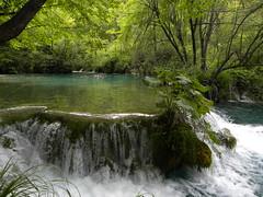 Plitvika Jezera (v zsofia) Tags: park lake waterfall viz plitvice termeszet jezera tavak plitvika vizeses