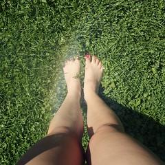 214/365 Rainbow Feet (Laine Apine) Tags: selfportrait feet myself square rainbow nailpolish gass 208 project365 365days