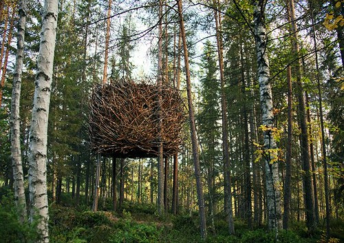 tree hotel6