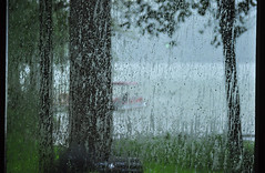 Rain on the Screened Porch (BKHagar *Kim*) Tags: storm water rain weather river al alabama stormy screen athens rainy porch elkriver screened riversong bkhagar