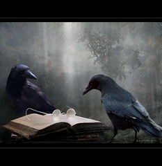 Reader (h.koppdelaney) Tags: life art history students digital photoshop dark buch glasses book reader symbol magic picture culture philosophy intelligence research mystik crow brille wisdom professor underworld awareness metaphor yesterday past raven neugier curiosity secrets psyche studies dunkel clever scientist symbolism searching psychology mystisch archetype edgarallenpoe geschichte bildung vergangenheit durchblick geheimnis aufmerksamkeit forschung weisheit historiker intelligenz tiefe rckblick klarheit schlau leser forscher wissenschaftler idream selbsterkenntnis magicunicornverybest koppdelaney