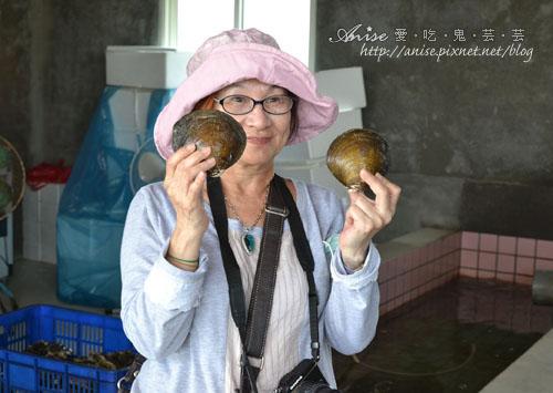 馬蹄蛤003拷貝.jpg