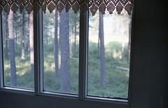 "66 32' 35"" (Heisenberg Y) Tags: window finland circle woods rovaniemi arctic analogue yashica finlandia circolo polare artico"