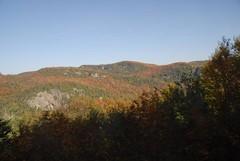 DSD_7720 (Greying_Geezer) Tags: autumn ontario canada fall colors colours scenic trains autumncolours railways railroads saultstemarie on algoma agawacanyon traintour