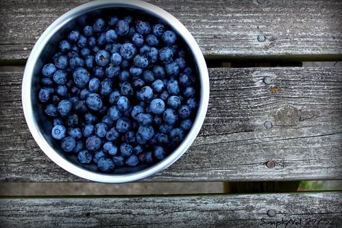 A Bowlful of Blue