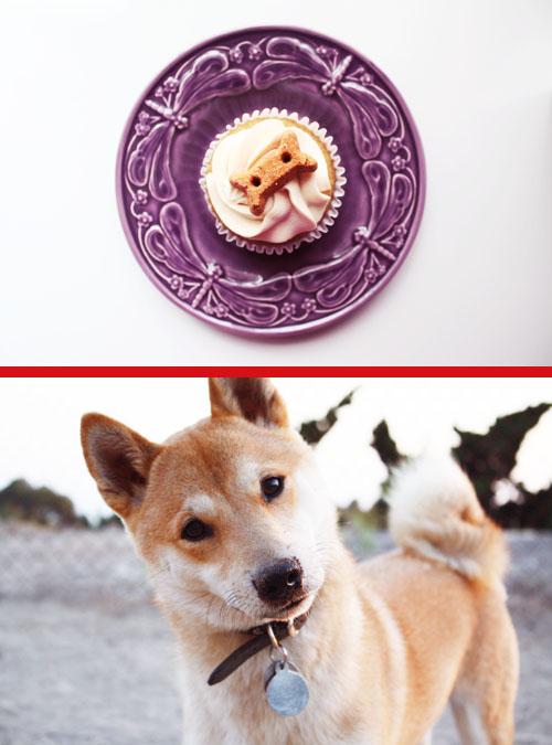 *Ponyo's 1st Birthday*