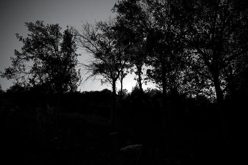 tramonti da topolo