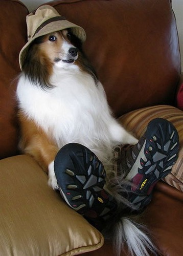 soft hat and sneakers