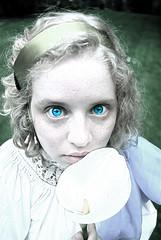 Piercing eyes (Nicathor) Tags: seattle blue fiction urban flower nature washington eyes whimsy magic hill sprite fairy capitol mystical fairies