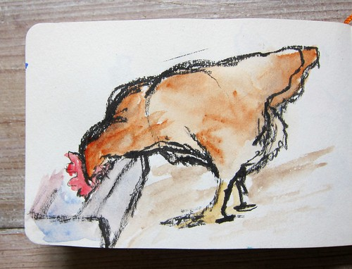 Chicken Sketch by Danalynn C