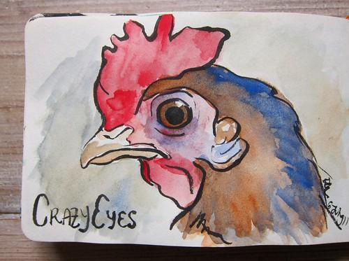 Chicken Watercolor by Danalynn C
