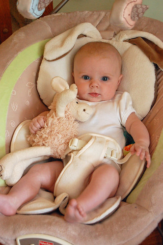 Bouncy Seat with Sheep 071611 01