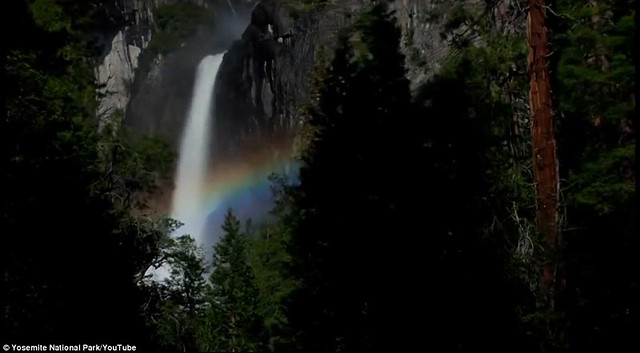 Dazzling arc of colour lights up night sky at Yosemite National Park  5