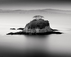 Lone Tree Island (Kanaka Menehune) Tags: california longexposure tree water island explore lonetreeisland