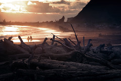 bois mort - suite (sparth) Tags: ocean wood beach silhouette june canon dead la washington couple pacific northwest silhouettes shore pacificnorthwest l push trunks washingtonstate pnw plage 70200 f4 deadwood lapush tronc 70200f4l 2011 troncs 5dmkii