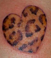leopard heart (LauraBeeBennett) Tags: animals tattoo tattoos startattoo napacalifornia winecountrycalifornia hearttattoos animaltattoos tattooladies winecountrytattoos napacaliforniatattoos flyingcolorstattoo myapprenticeisalittlemonster