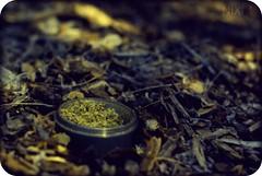 (The Prof.) Tags: nature outdoors 50mm high weed pentax smoking bark shake bud marijuana grinder chronic dank chron k10d