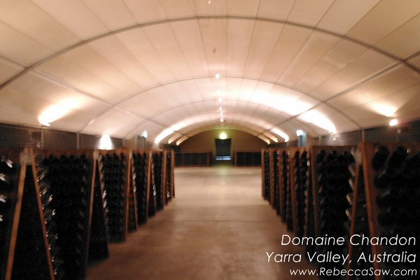 domaine chandon yarra valley australia (19)
