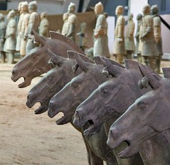 Terracotta horses, The terracotta army, Xi'an (Vicky jg) Tags: china horses 1974 asia famous tourist pit xian terracottawarriors covered historical iconic cavalry attraction archeological shaanxi calvary excavated terracottaarmy travelphotography colourphotography funeraryart pitone chinesesculpture pit1 terracottahorses qinshihangsarmy vickyjg vickyjgphotography