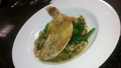 Oven-roasted Chicken over White Bean Ragout
