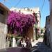 Rue Zoé Grimaldi Ortoli,  Porto-Vecchio, Corse