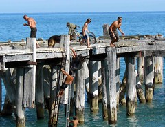 "003 Tokomaru Bay Boys on Jetty ev • <a style=""font-size:0.8em;"" href=""http://www.flickr.com/photos/36398778@N08/5991213660/"" target=""_blank"">View on Flickr</a>"
