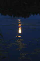 July moon_2011_07_17_0035 (FarmerJohnn) Tags: cloud moon lake reflection water night clouds canon suomi finland july calm silence midnight moonlight vesi kuu y laukaa 24105 1635 jrvi pilvi keskinen heinkuu tyyni keskiy kuutamo valkola vedenpinta hiljaisuus julymoon lakesurface canon7d heijatus anttospohja juhanianttonen