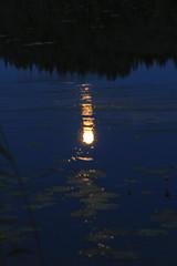 July moon_2011_07_17_0035 (FarmerJohnn) Tags: cloud moon lake reflection water night clouds canon suomi finland july calm silence midnight moonlight vesi kuu y laukaa 24105 1635 jrvi pilvi keskinen heinkuu tyyni keskiy kuutamo valkola vedenpinta hiljaisuus julymoon lakesurface canon7d heijatus anttospohja juhanianttonen