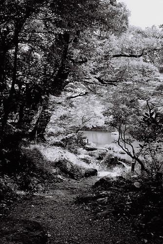 Narita Temple Garden 2010