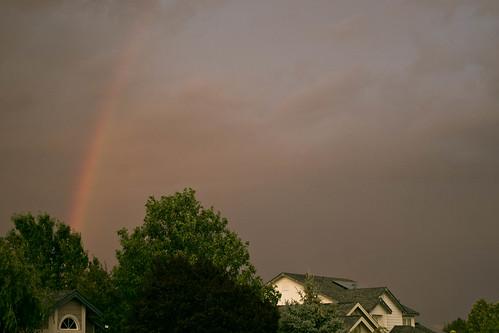 209:365, rainbow