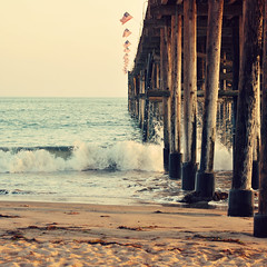 Ventura Pier (Carrie McGann) Tags: ocean california wood sunset sea sunlight seaweed beach water sunshine square mar interesting sand nikon waves kelp americanflags ventura venturapier sanbuenaventurastatebeach