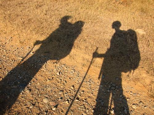 Shadows on the Camino by Danalynn C