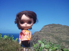 """Day 114:365 Penny. We made it up """"cactus"""" hike!"""