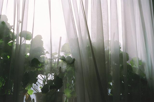 interiors 4.