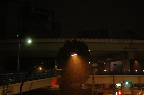 night walker 56