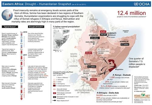Al-Shabaab makes it hard for internally displaced Somalis to