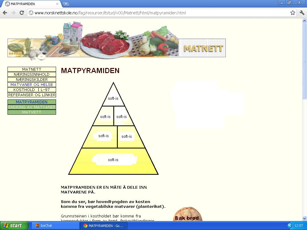 næringspyramide neanderthal