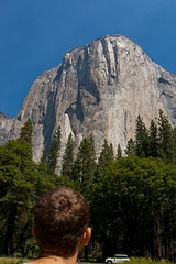 Looking Up at El Capitan