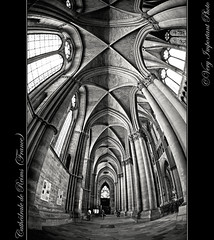 Cathdrale de Reims (France) (Very Important Photo) Tags: niceshot champagne cathdrale reims cathdraledereims edificereligieux blinkagain