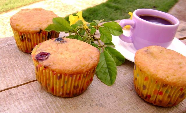 Muffins de blueberry e cranberry