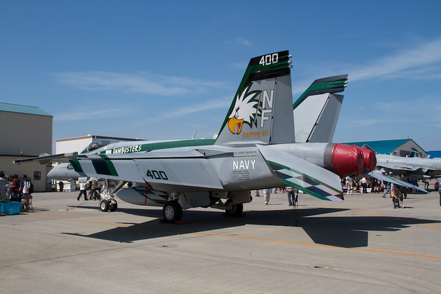 VFA-195 DAMBUSTERS CAG