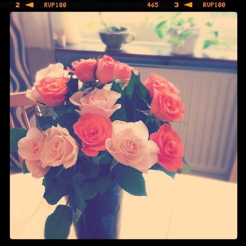 Rosor från Maja!